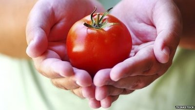 Tomatoes, Can They Fight Cancer?