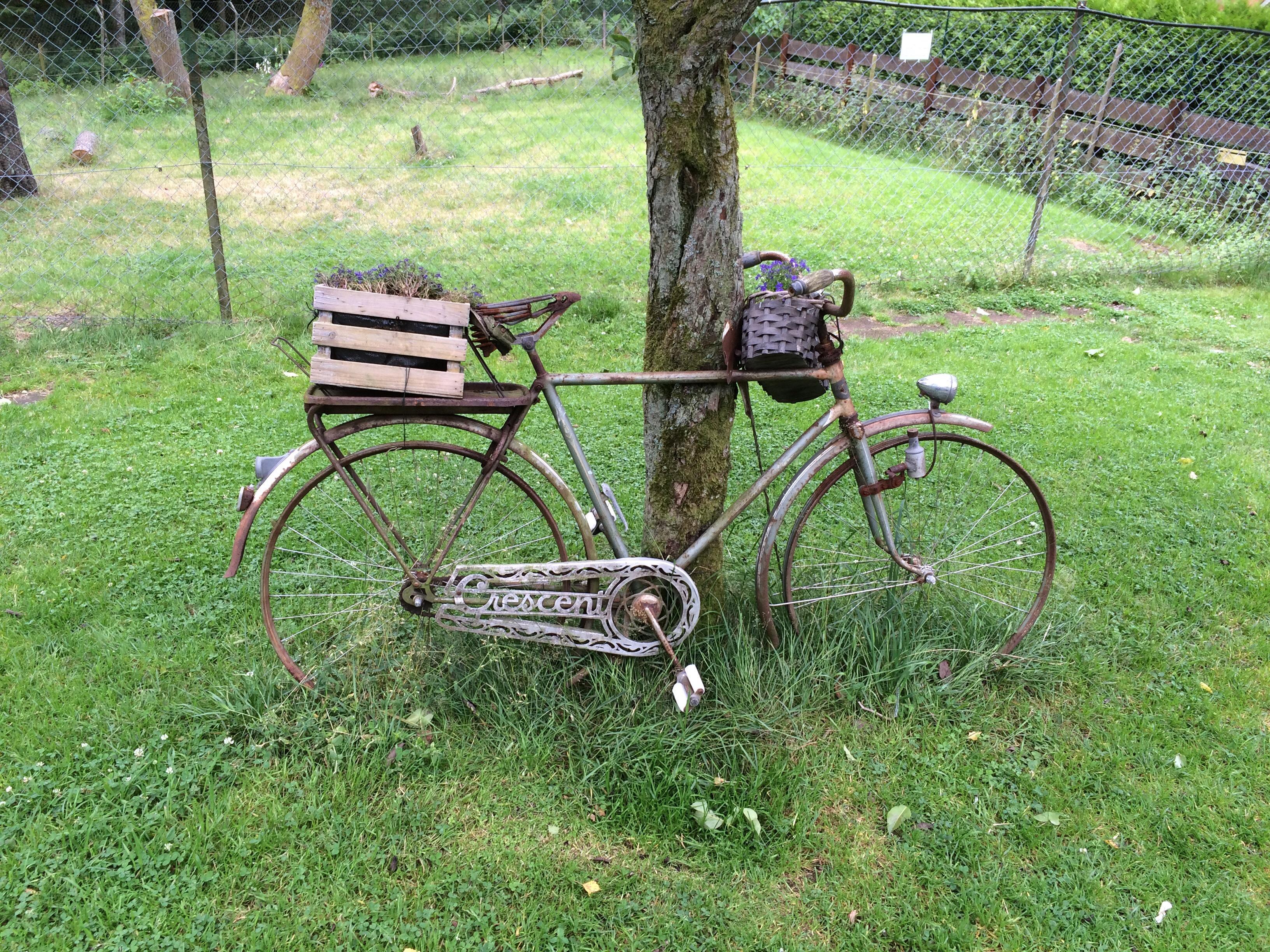 Bike ready for summer