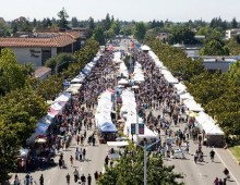 Rundown of Fairs and Festivals going on in the Bay Area for 2018