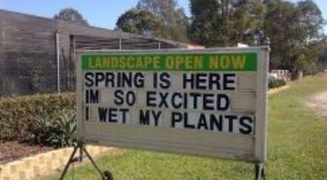 Spring is here. I'm so happy I wet my plants.
