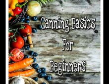 Canning Basics for Beginners