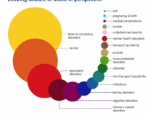 Leading CAUSES and RISKS of Death