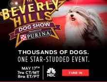 Beverly Hills Dog Show, May 17 on NBC from 8-10 p.m. ET on NBC